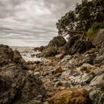 NZL_TNG_002