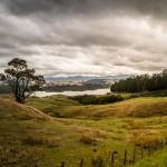 NZL_TNG_003