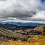 NZL_TNG_017